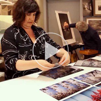 Fertile Images + Design (Artist Documentary)